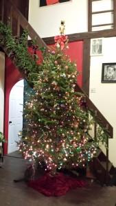 My 2014 Christmas tree!
