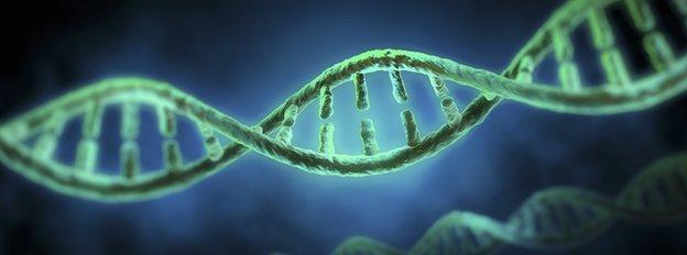 DNA_stock
